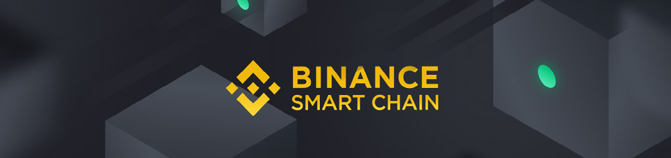 Conectar MetaMask Binance Smart Chain