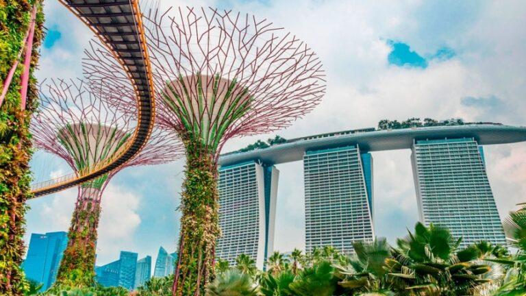 Corea del Sur se inspira en Singapur para crear nuevas políticas de seguros en el sector de las criptomonedas.